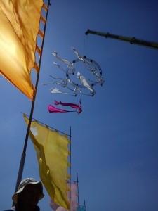 erialC - Aerialist / Acrobat