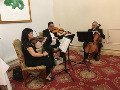 Ariella Strings - Quartet, Trio & Duo image