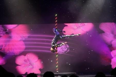 Duo Sensation - Circus Performer