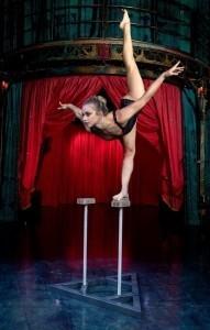 Aerial Artist and Contortionist - Aerialist / Acrobat