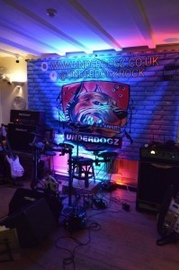 The UnderDogz - Cover Band