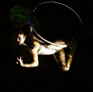 Aerial pole, aerial silks, aerial Lyra etc.. - Aerialist / Acrobat
