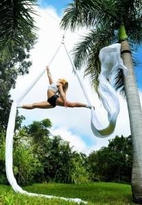 Aerial Silks and Dance Trapeze - Aerialist / Acrobat