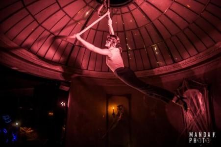 Elena Brocade - Aerialist / Acrobat