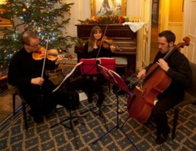 Fiddle-Stick Trio and String Quartet - Other Instrumentalist