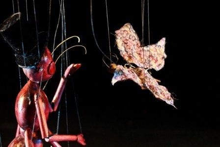 String Theatre - Puppeteer