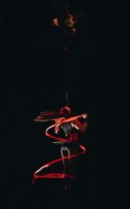 Roxanne  - Circus Performer