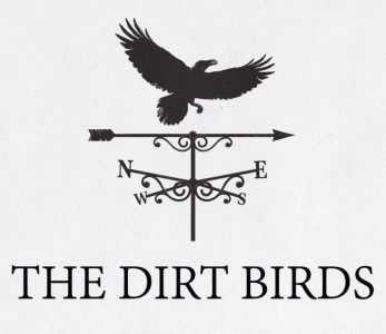 The Dirt Birds - Function / Party Band