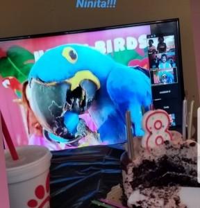Happy Birds  - Other Children's Entertainer