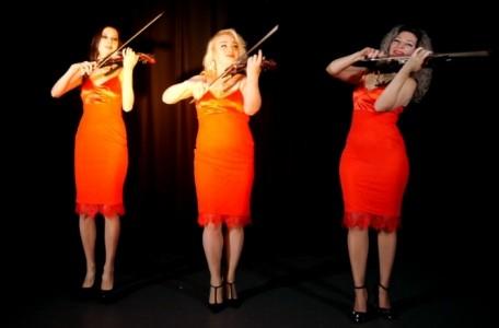 VIVA Electro Strings - Electric Violinist