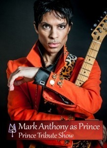 Mark Anthony as Prince - Other Tribute Act