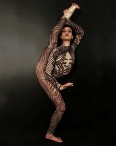 Elegant and dynamic Silks performance - Aerialist / Acrobat
