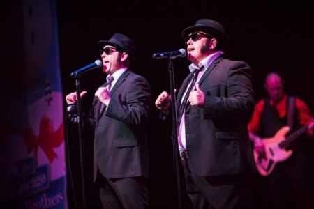 The Chicago Blues Brothers  image