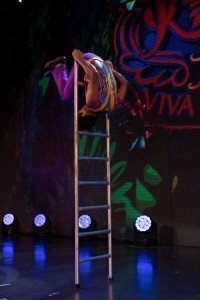 Free standing ladder act and buncling juggling act   - Circus Performer