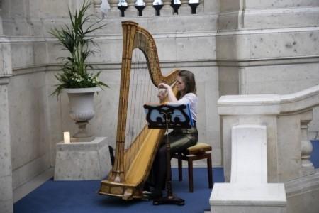 Lucy Nolan-harpist - Harpist