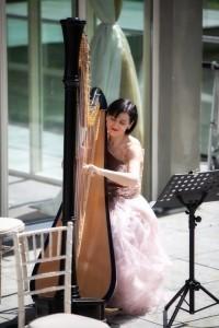 HARPIST/SINGER/PIANIST/ORGANIST - Harpist