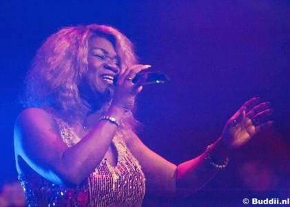 Hot Leggs Tina Turner Tributeband image