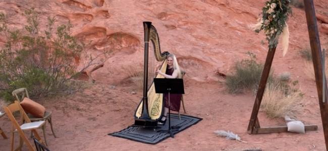 Melody in Flight, Harpist - Harpist