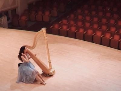 Beste Toparlak - Harpist