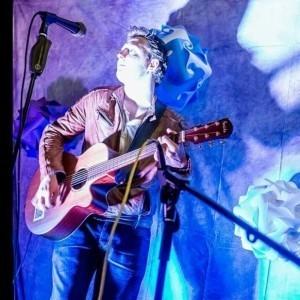 Mike Lees - Guitar Singer