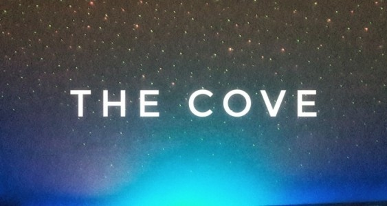 The Cove - Duo