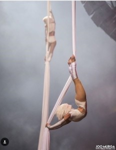 Krista Henderson - Aerialist / Acrobat