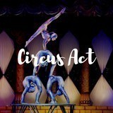 Casting Call For Circus Acts! Shows December 2019 Lisbon Portugal image