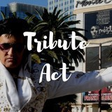 Elvis Tribute Act Required For Wedding In Bolton - 11 July 2020 image